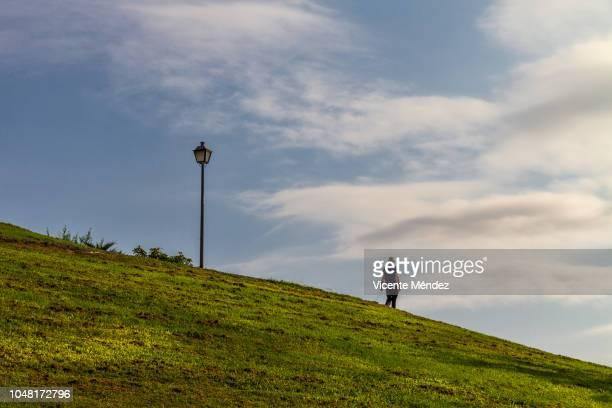 walking the dog in the park - vicente méndez fotografías e imágenes de stock
