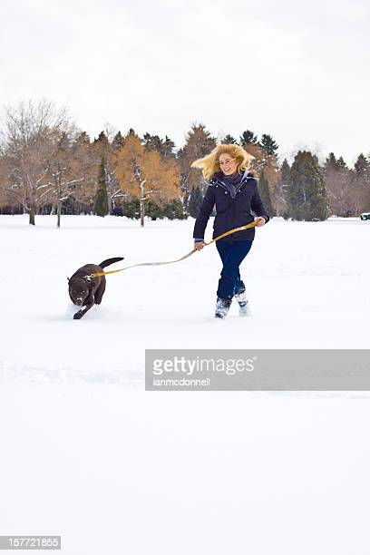 犬の散歩、