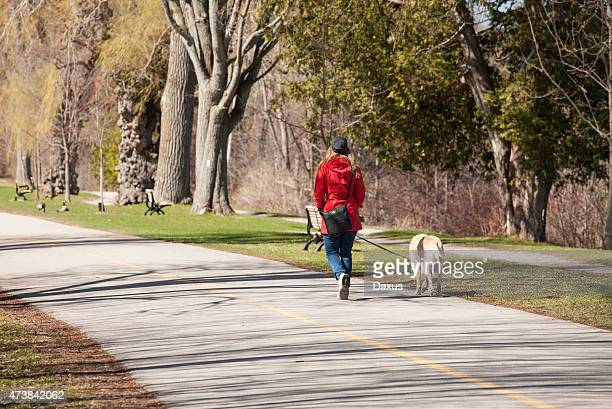 walking the dog - london ontario stock photos and pictures
