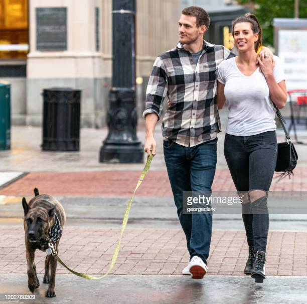 walking the dog together - pbs stock pictures, royalty-free photos & images