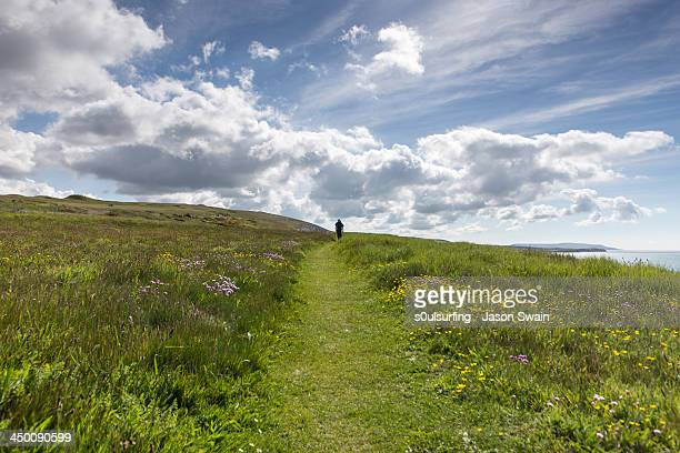 walking the isle of wight coastal path - isle of wight stock photos and pictures