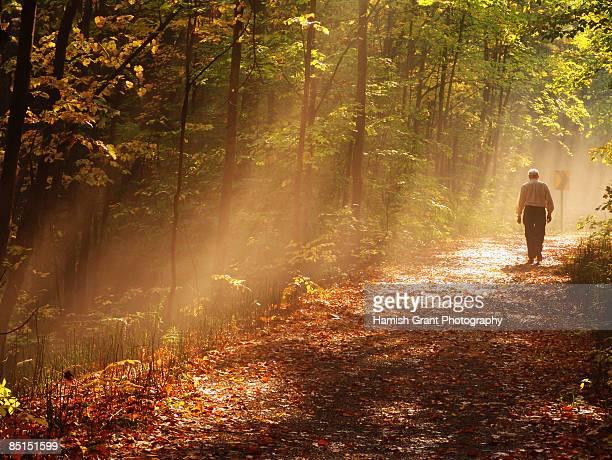 Walking the Tiny Trail