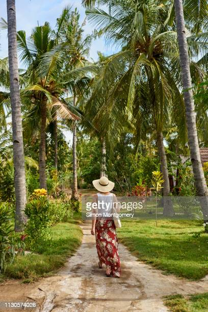 walking through palm trees on the gili islands - lombok fotografías e imágenes de stock