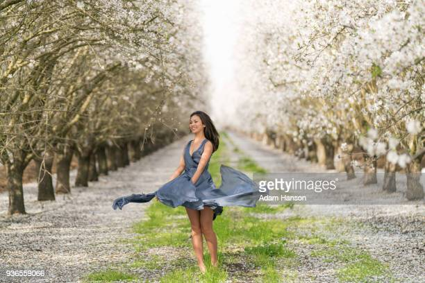 walking through the almond grove. - nuts models stock photos and pictures
