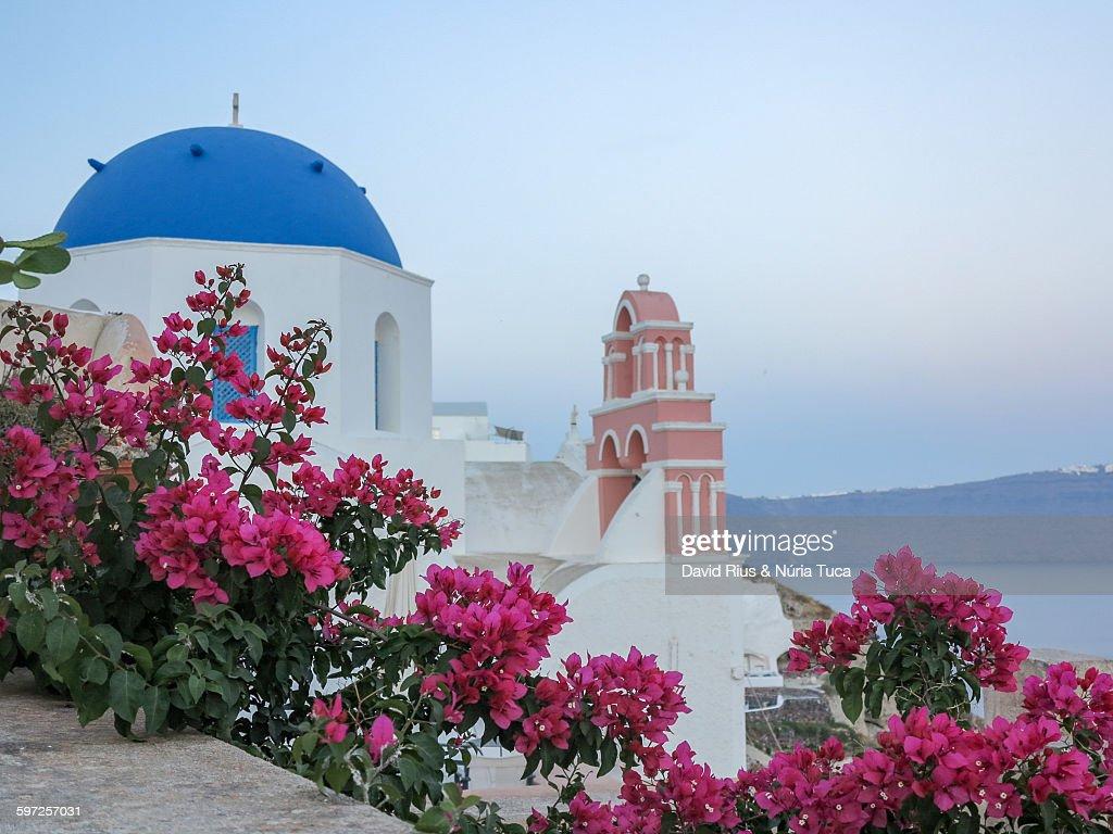 Walking through the streets of Santorini : Stock Photo