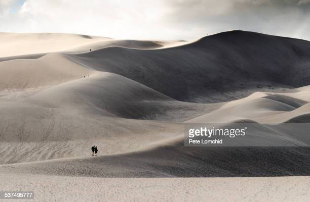 walking to the dunes - great sand dunes national park stock pictures, royalty-free photos & images