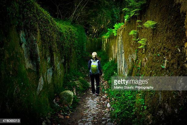 walking to the quinta da regaleira - sintra fotografías e imágenes de stock