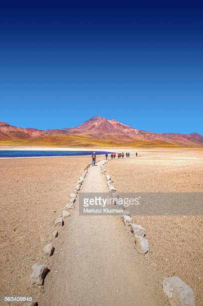 walking towards miscanti lake in high andes - antofagasta region stock photos and pictures