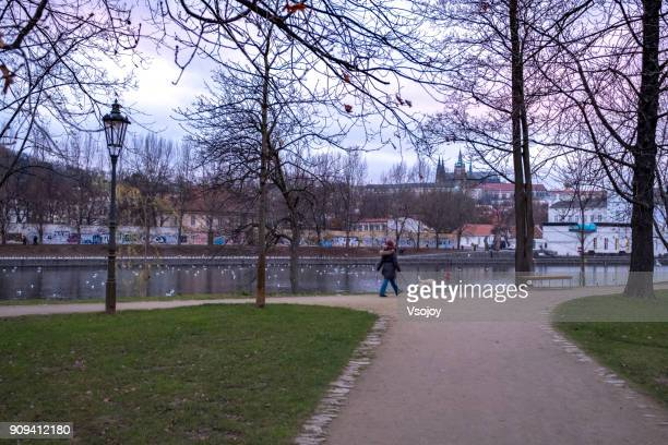 walking with a dog at the park, prague, czech republic - vsojoy stock pictures, royalty-free photos & images