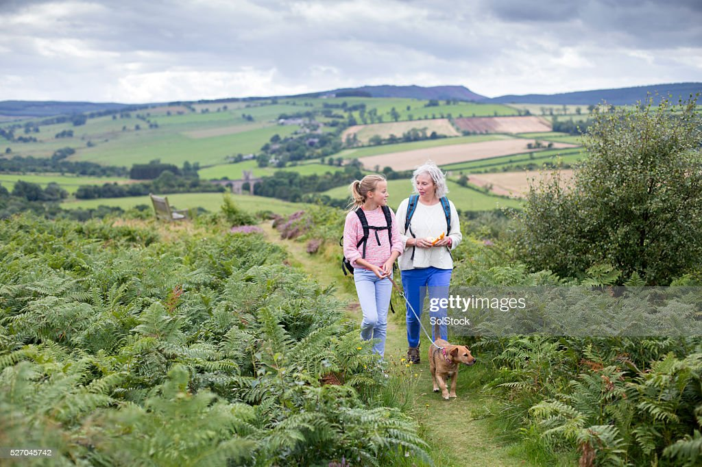 Walking with my Grandmother : Stock Photo