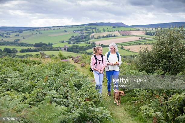 walking with my grandmother - northumberland stock pictures, royalty-free photos & images