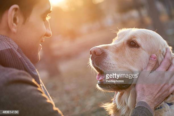 walking with retriever - aaien stockfoto's en -beelden