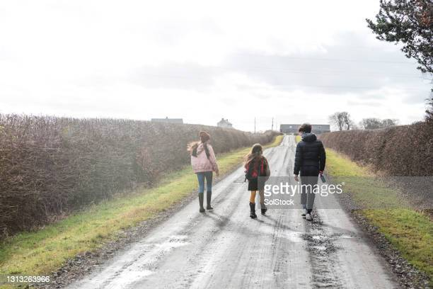 walking with siblings - adolescence stock pictures, royalty-free photos & images