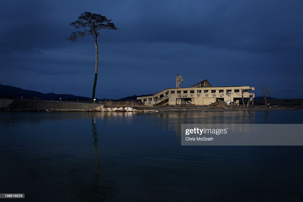 Walkley Press Photographer of The Year Portfolio on November 22, 2012 in Singapore. Image Caption: A single pine tree that was left standing after the March 11th tsunami last year, which swept away an entire forest in the city of Rikuzentakata, is seen on March 10, 2012 in Rikuzentakata, Japan. On the eve of the one year anniversary of the Tohoku earthquake and tsunami the effected areas have been inundated with families, friends and relatives, the limited amount of hotels in the area are full to capacity with the worlds media and people from across Japan are arriving to take part in ceremonies paying tribute to the many people who lost their lives. The 9.0 magnitude strong earthquake struck offshore on March 11, 2011 at 2:46pm local time, triggering a tsunami wave of up to ten metres which engulfed large parts of north-eastern Japan and also damaged the Fukushima nuclear plant, causing the worst nuclear crisis in decades. The number of dead and missing ammounted to over 25,000 people.