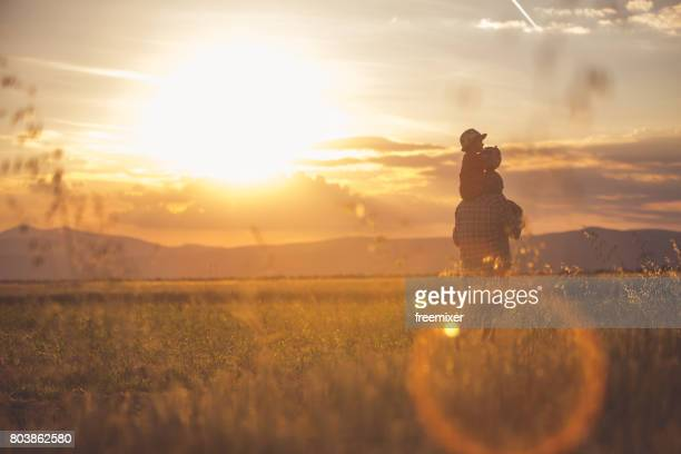 walks during sunset - sunset stock pictures, royalty-free photos & images