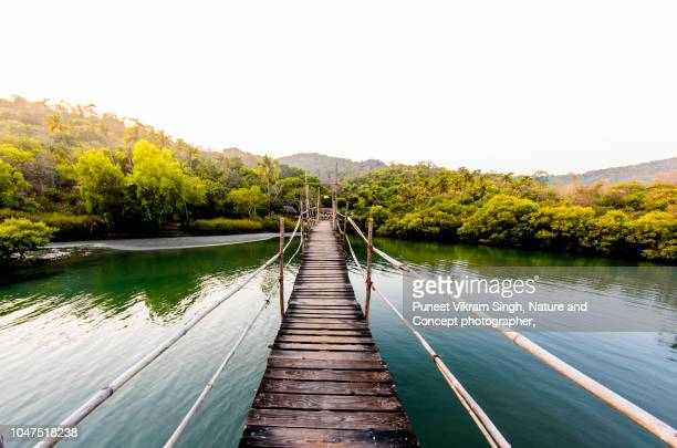 a walkway bridge made of wooden planks and leading to an island - goa stock photos and pictures