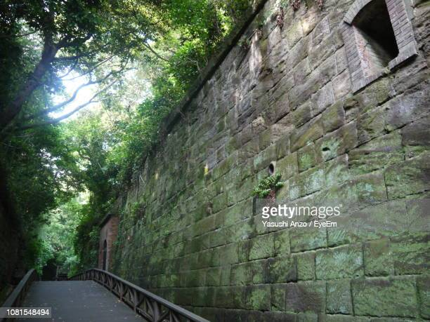 Walkway By Stone Wall Against Trees