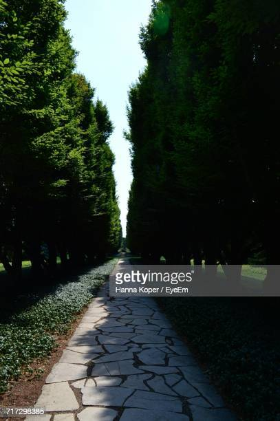 walkway leading to park - koper stock photos and pictures