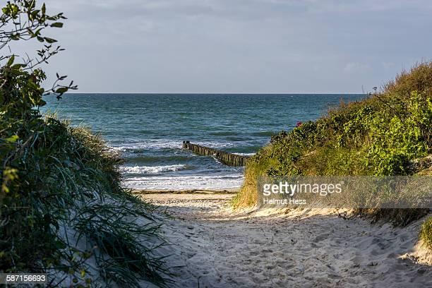 Walkway on the shore