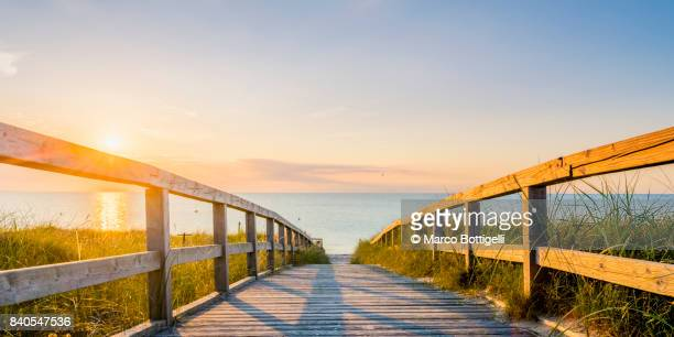 walkway to the baltic sea. germany. - local landmark stock pictures, royalty-free photos & images