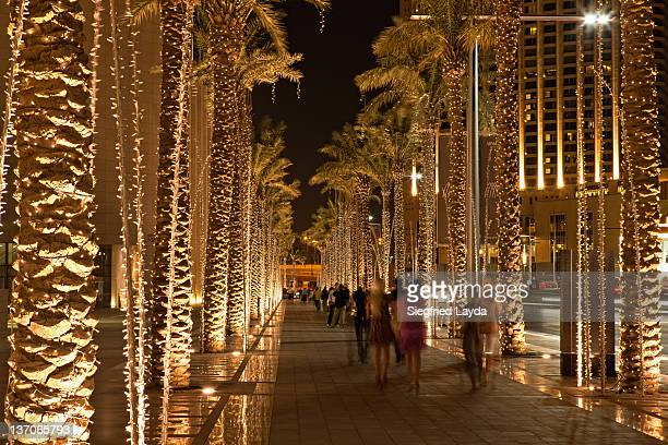 Walkway with Palmtrees