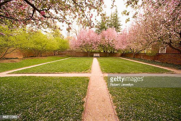 walkways on grounds of university of virginia, charlottesville, virginia , usa - シャーロッツビル ストックフォトと画像