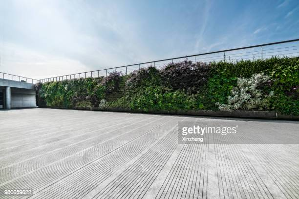 wall decorated with the plants - landscaped foto e immagini stock