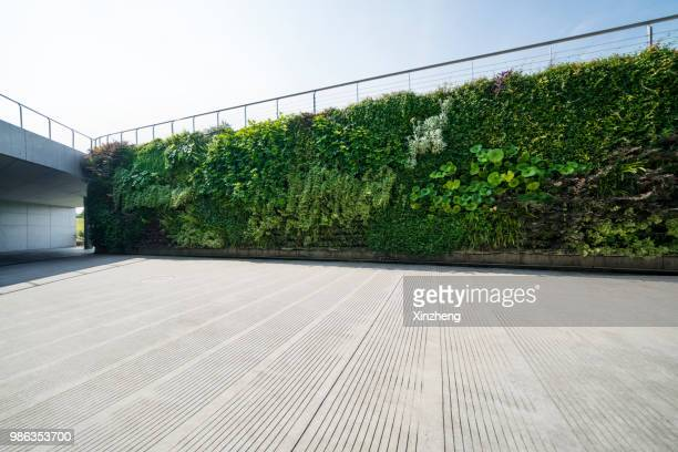 wall decorated with the plants - city life stock pictures, royalty-free photos & images