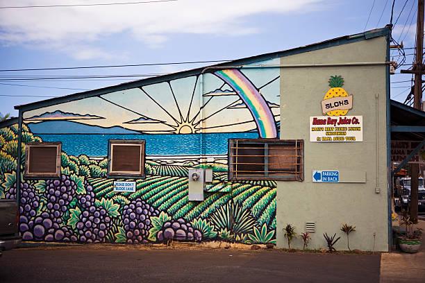 Wall decoration on Hana Bay Juice Co building.