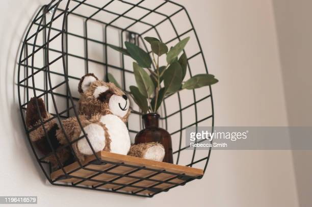wall decoration - dolly fox stock pictures, royalty-free photos & images