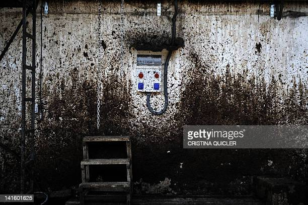 A wall is covered with oil squirted by machines that process olives on March 6 2012 on a 40hectare farm in the southern Spanish village of Iznajar...