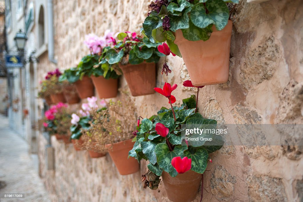 Wall Mounted Flower Pots Stock Photo