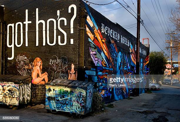 Wall murals painted along a Montrose avenue alleyway Los Angeles