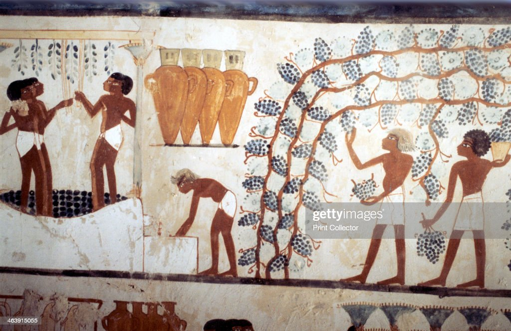 Wall painting from the tomb of the scribe Menna, Thebes, Ancient Egyptian, 18th dynasty. : News Photo