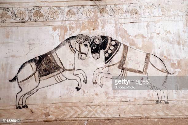 Wall paintings mural of horses fighting at Lakshminarayan temple, Orchha, Tikamgarh, Madhya Pradesh, India