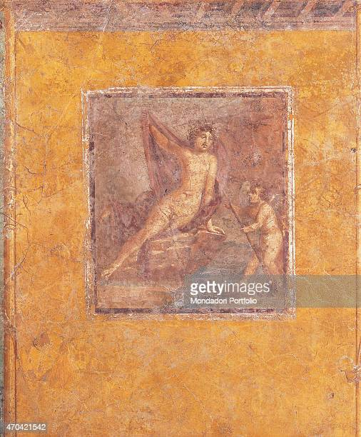 Wall with Narcissus by unknown artist 6279 1st Century AD ripped fresco 230 x 200 cm Italy Campania Naples National Archaeological Museum Room LXVIII...