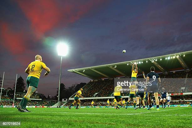 Wallabies captain Stephen Moore throws a lineout ball during the Rugby Championship match between the Australian Wallabies and Argentina at nib...