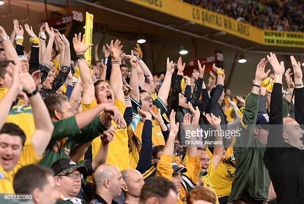 Wallabies fans celebrate during the Rugby Championship match between the Australian Wallabies and the South Africa Springboks at Suncorp Stadium on...