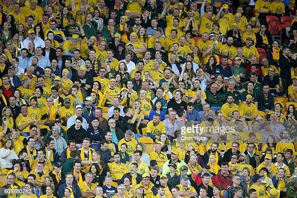 Wallabies fans cheer during the Rugby Championship match between the Australian Wallabies and the South Africa Springboks at Suncorp Stadium on...