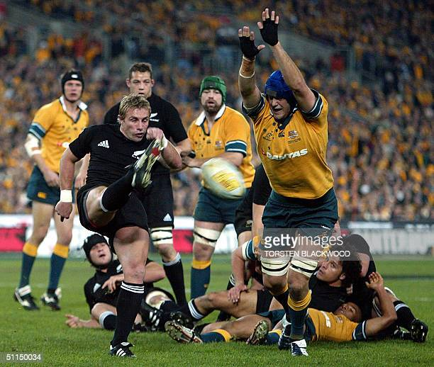 Wallaby Nathan Sharpe attempts to block a kick by New Zealand All Black halfback Justin Marshall during the Bledisloe Cup Tri-nations rugby union...