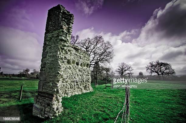 Wallingford Castle Meadows