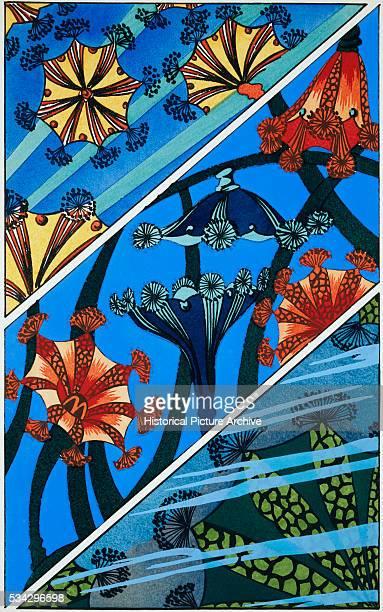 Wallpaper Design of Colorful Sea Anemones by Raskin