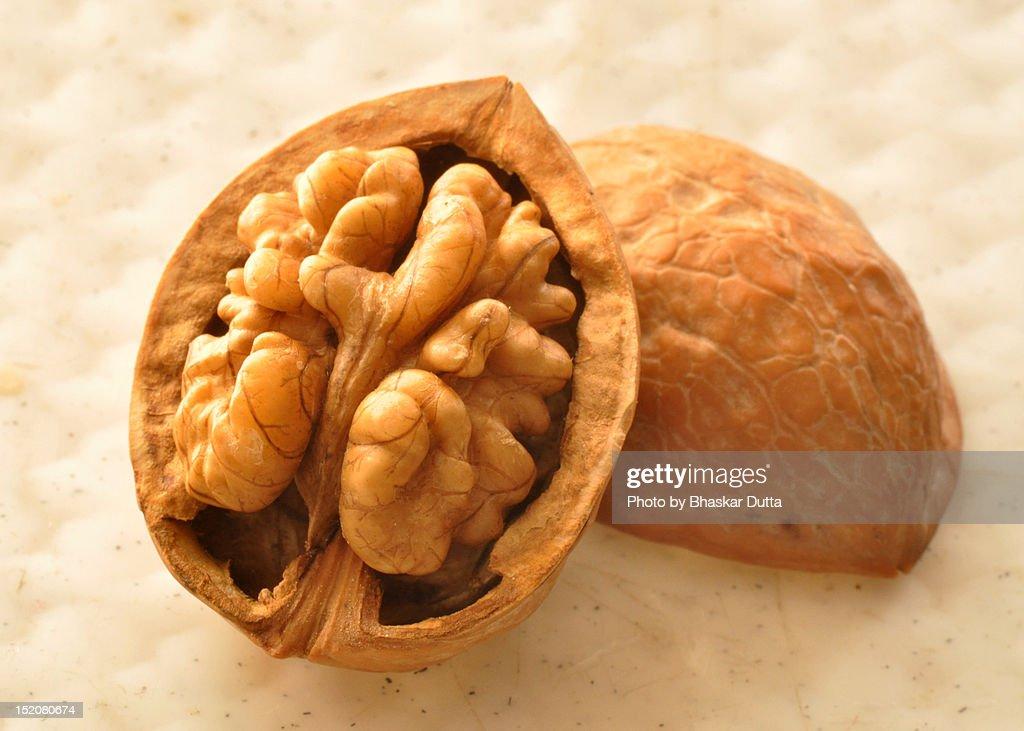 Walnut : Stock Photo