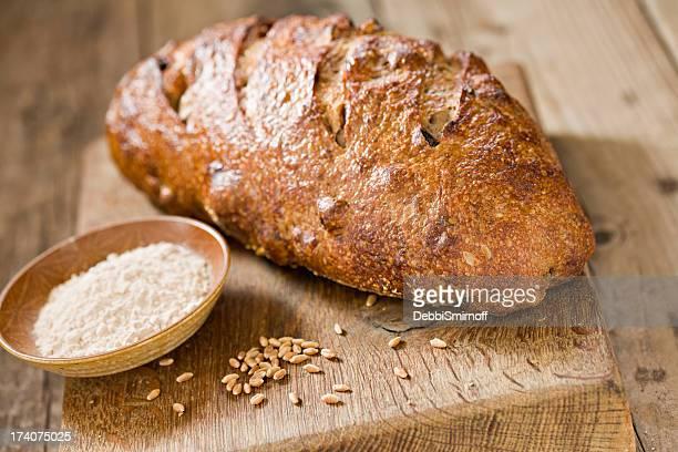 Walnut Rustic Sour Dough Bread