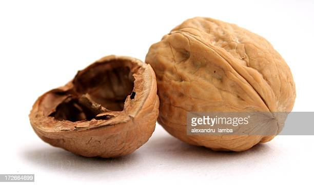walnut shell - nutshell stock photos and pictures