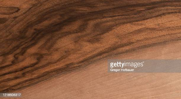 walnut tree veneer texture - walnut stock pictures, royalty-free photos & images