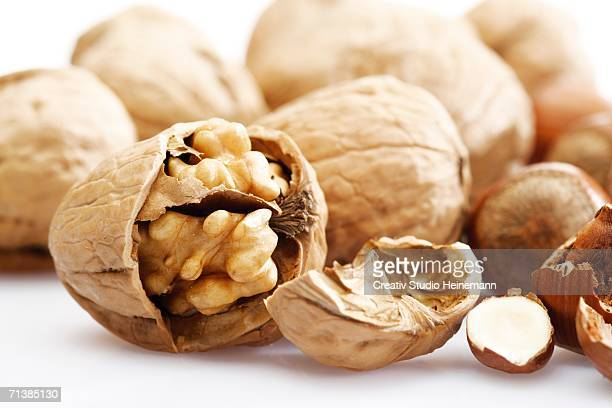 walnuts and hazelnuts, close-up - nutshell stock photos and pictures
