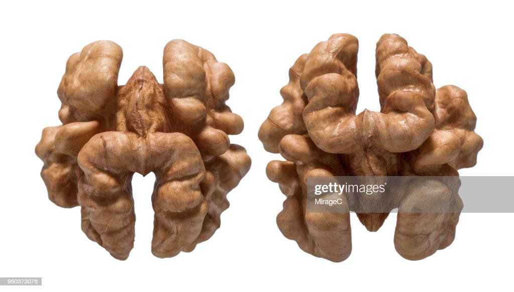 Walnuts Nut : Stock Photo