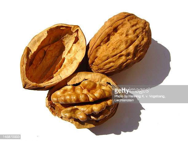 walnuts - walnut stock pictures, royalty-free photos & images