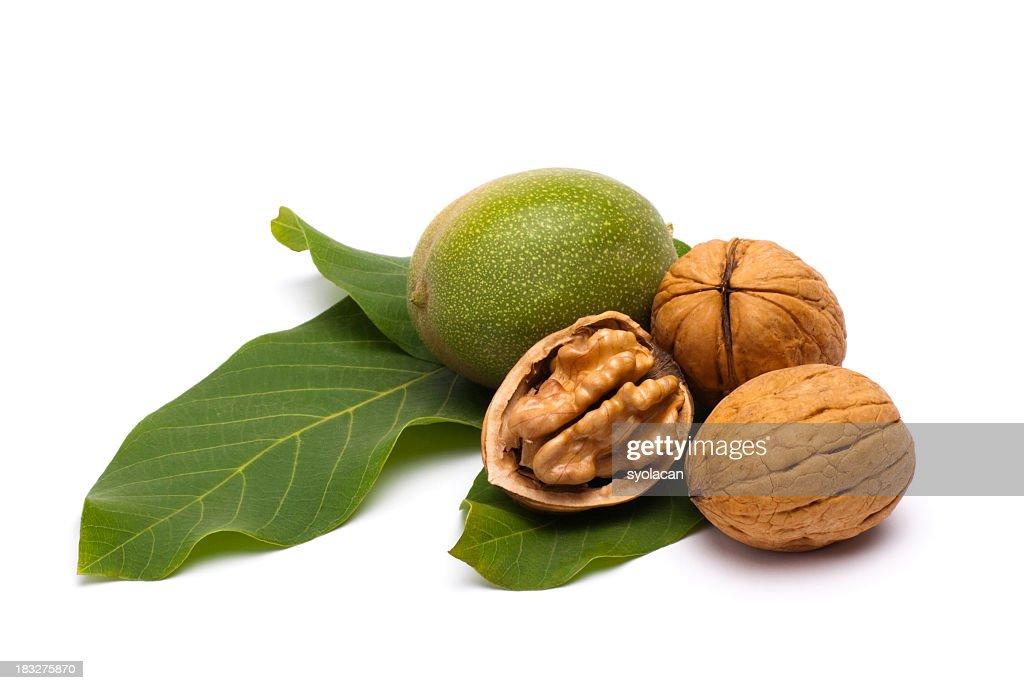 Walnuts : Stock Photo